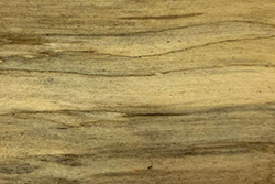 Spalted Birch Wood (Betula pendula)