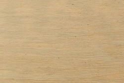 Birch Wood (Betula pendula)