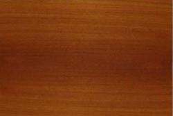 Bloodwood (Pterocarpus Erinaceus)