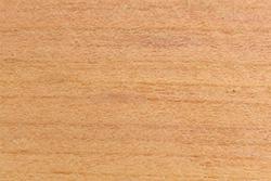 Plum Wood (Prunus domestica)