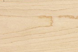 Hard Maple (Acer saccharum Marsh)