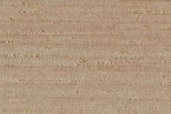 Hickory (carya alba)