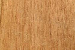 Apple Wood (Malus domestica)