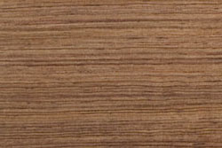 Honduras Rosewood (dalbergia stevensonii)