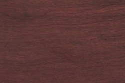 Campincerán (Dalbergia granadillo Pitt.)
