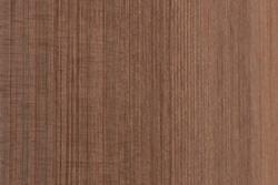 Sequoia (Sequoia Sempervirens)
