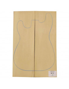Lime Body Nº9 Bass / Electric Guitar