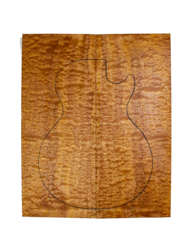 AAA Body Top Sapele Quilted Bass /...