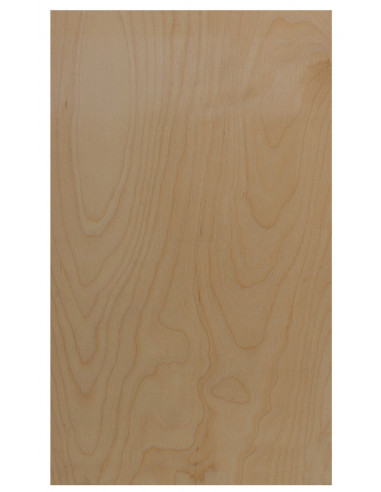 Front Board 500x310x3 mm.