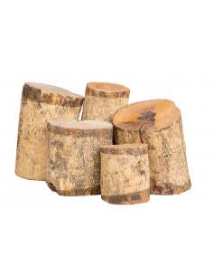 Boxwood Log