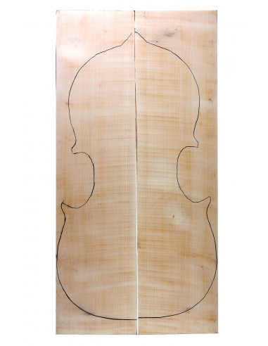 AAA Curly Maple Back 2x845x245x40/10 mm