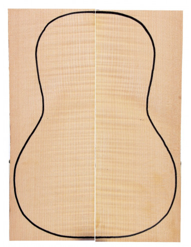 Curly Maple Back (360x130x4 mm)x2