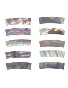 Pieza Abalone para Boca GOTOH DM-RST258 20x5x4,5 mm.
