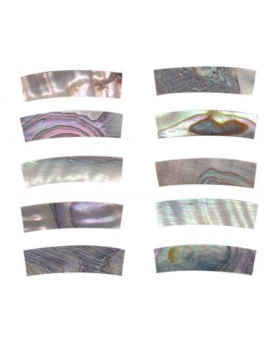Abalone pce. Rosette GOTOH DM-RST1201 20x5x4,5 mm.