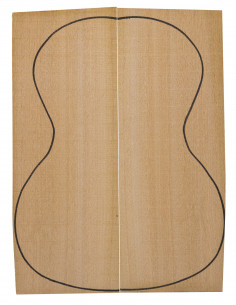 Sapele Concert / Tenor Backs