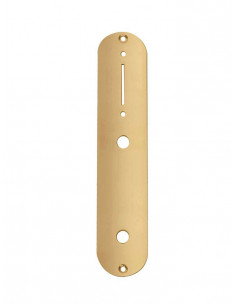 Gold gloss Tele style control plate