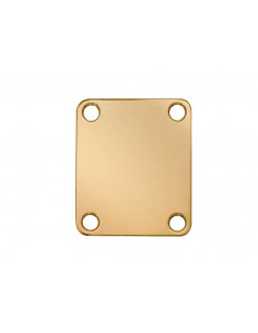Rectangular gold neck mounting plate