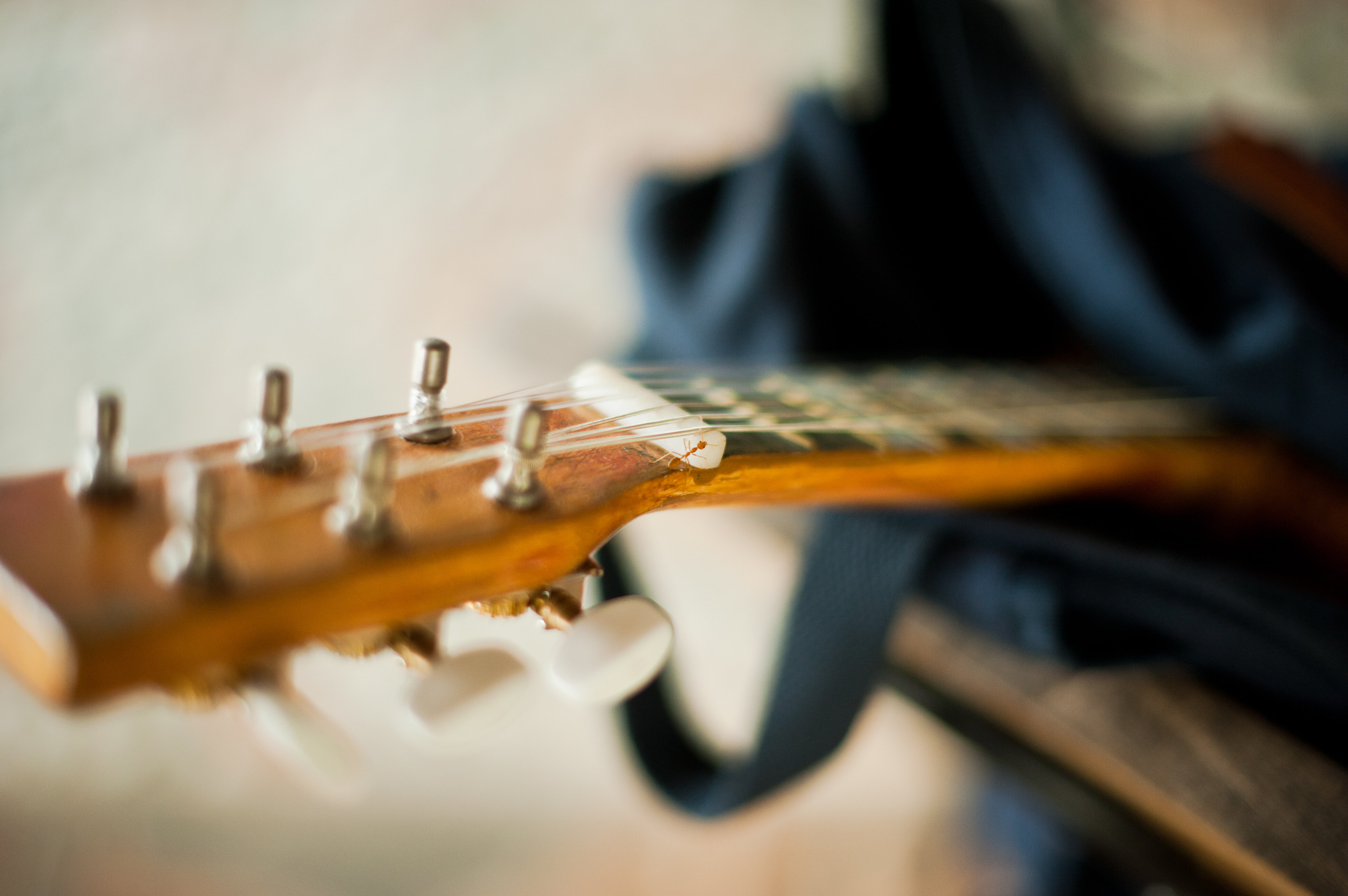 Herramientas para Luthiers